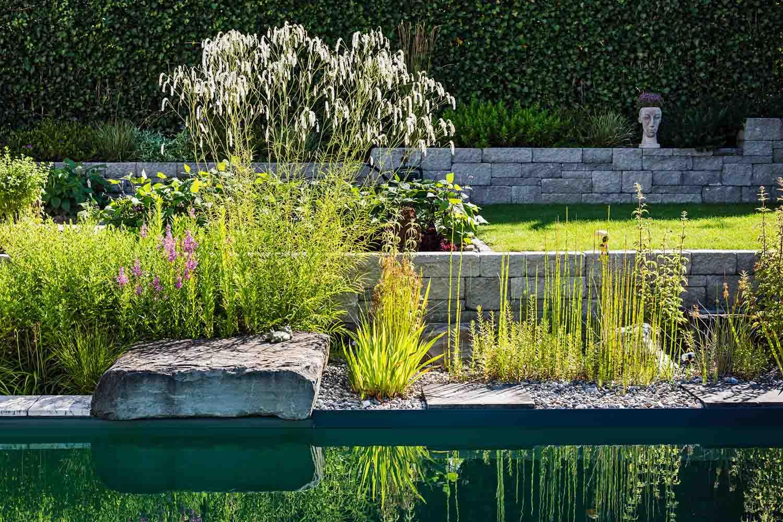 Garten Galerie Grimm Fur Naturpool Schwimmteich Biopool Pool