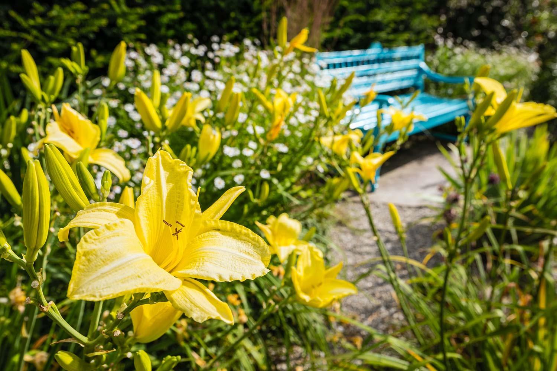 Garten Galerie Grimm Für Naturpool Schwimmteich Biopool