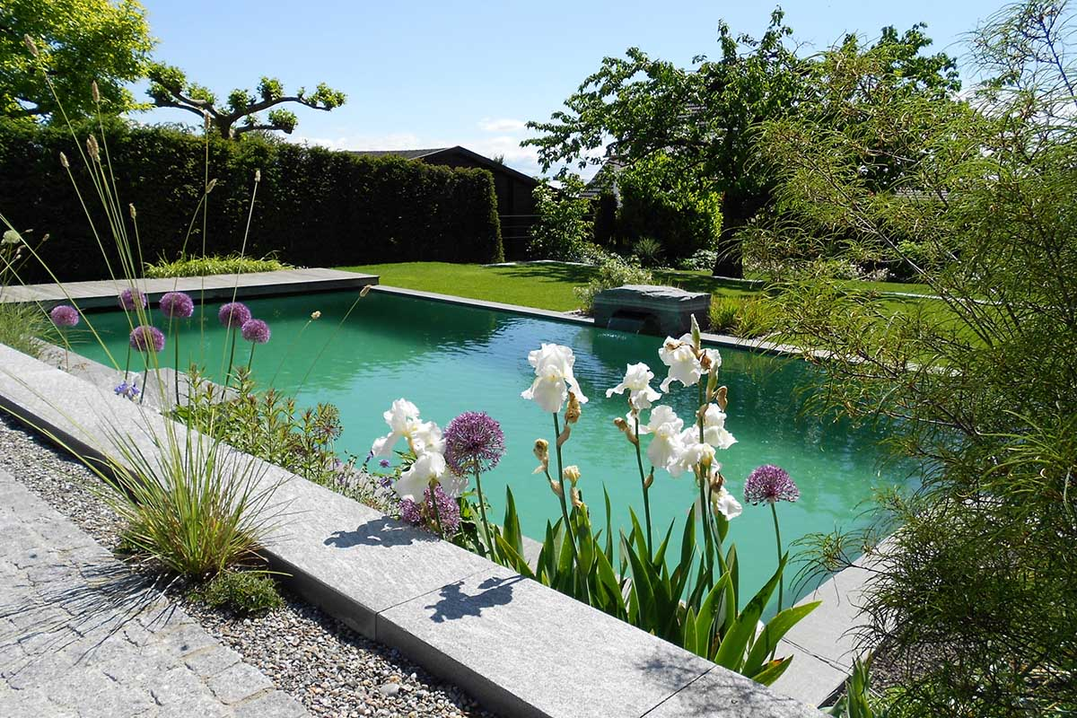 Ein Schwimmteich Oder Pool Benötigt Ganz Spezielle Pflege, Die Regelmäßig  Ein Fachmann übernehmen Sollte. Zum Beispiel Führen Wir Die Inbetriebnahme  Im ...